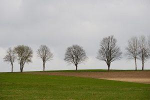 Caritasverband Siegen-Wittgenstein e.V., Hospizhilfe, Trauerbegleitung, Trauercafé