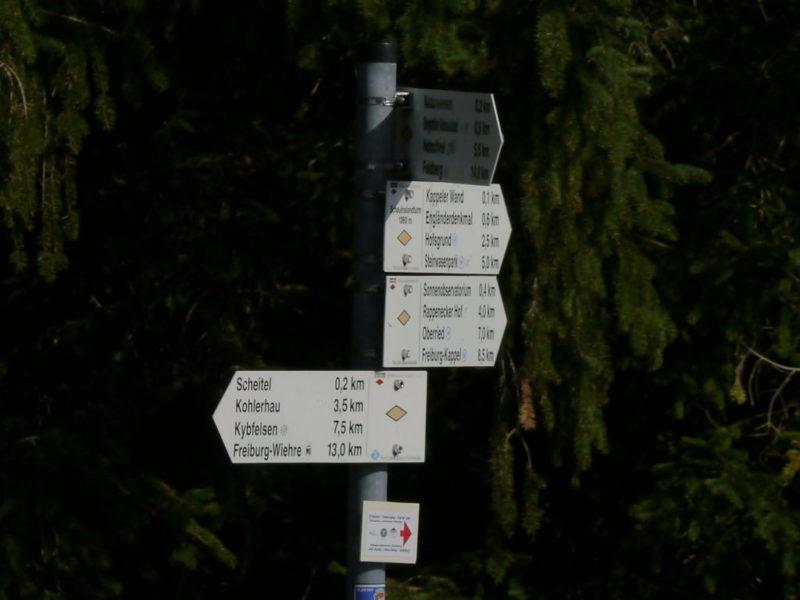 Ein Wegweiser im Wald, der in verschiedene Himmelsrichtungen zeigt.